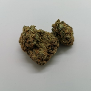 Girl Scout Cookie / Wholesale