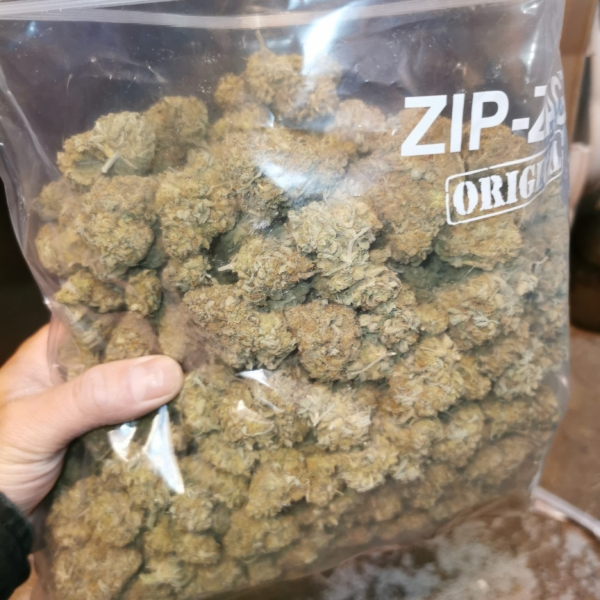 Pineapple Express   Wholesale